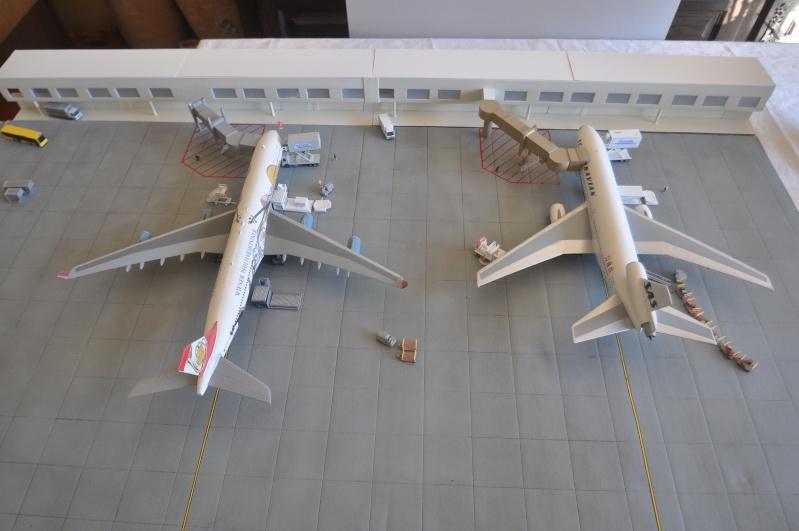 Mes réalisations de maquettes d'avions Dsc_0110