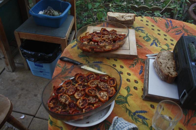 Tamarillo ( fruits du Cyphomandra betacea ) récolte problèmatique Plat_a10
