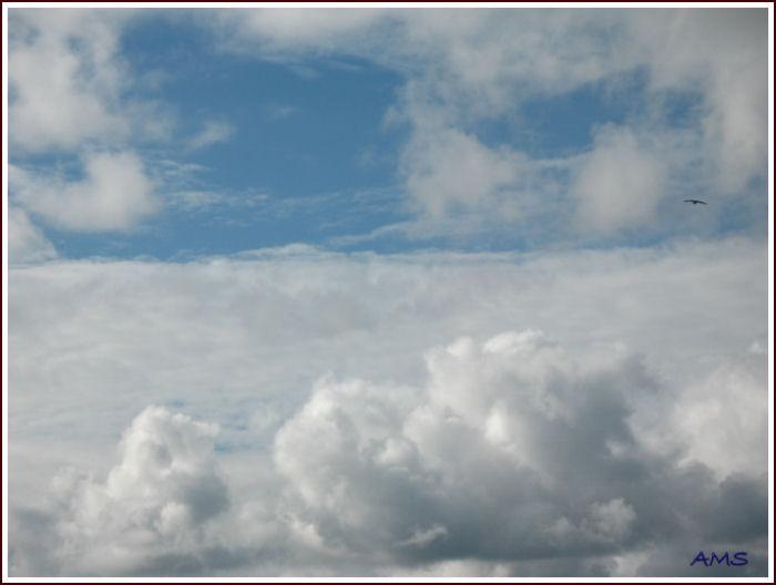 Bretagne et autres photos - Page 3 Img_0012