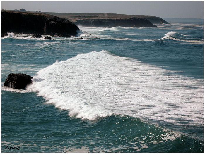 Bretagne et autres photos - Page 3 Img_3310