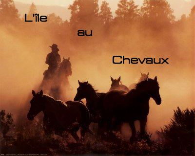 l'ile aux chevaux
