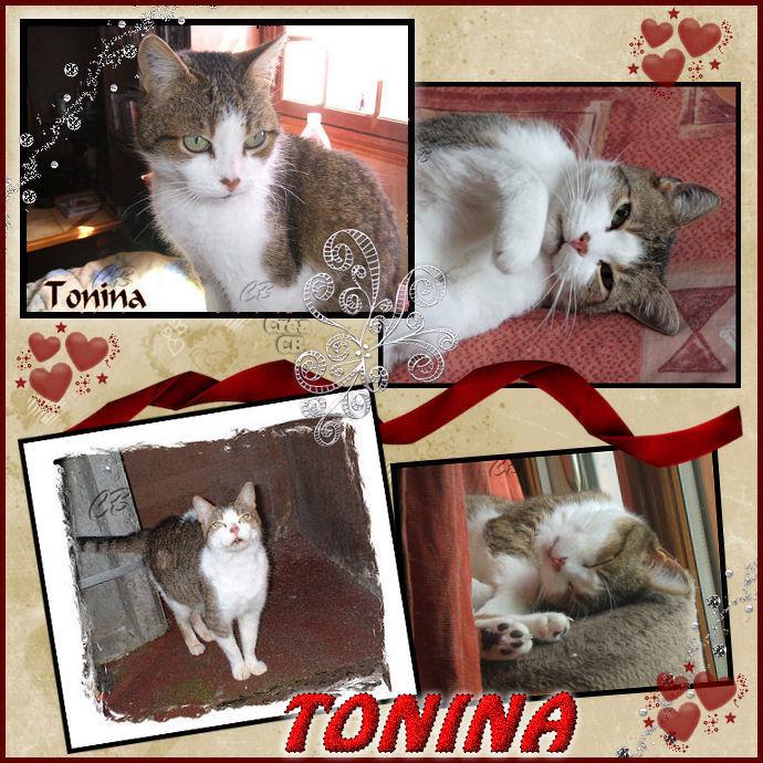 Mimi: Le bonheur après l'errance Tonina11