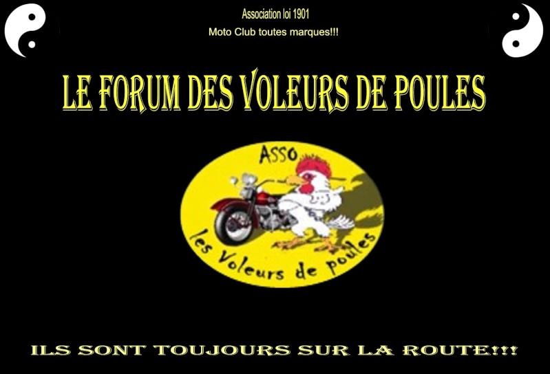 le Forum des Voleurs de poules 33