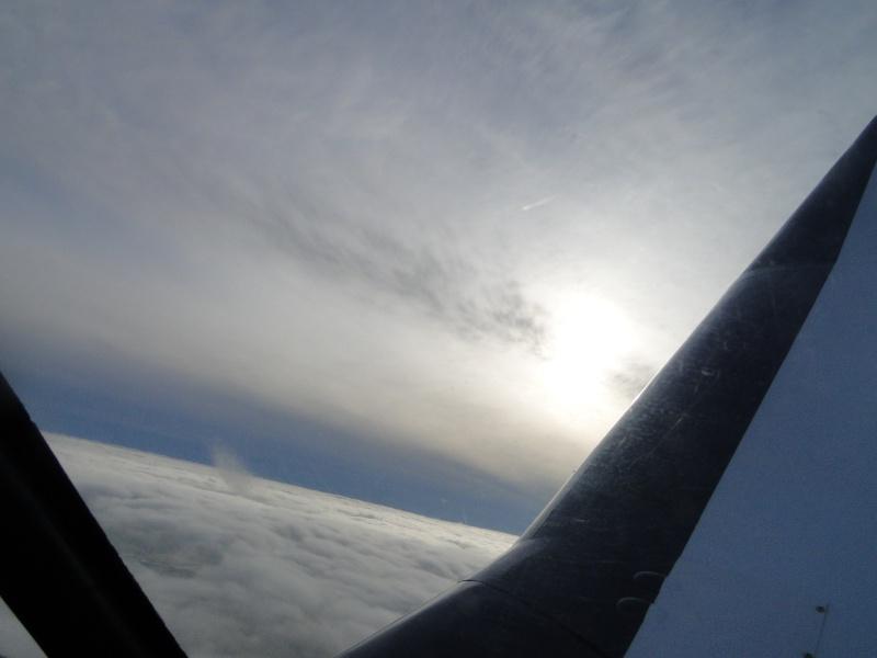 Les vols de la mascotte - Page 3 Dsc02516
