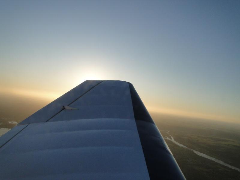 Les vols de la mascotte - Page 3 Dsc02715