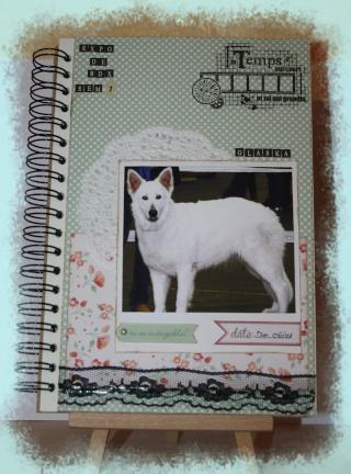 My family Diary - Liliscrap33 _ MAJ le 28/09 Sem_110