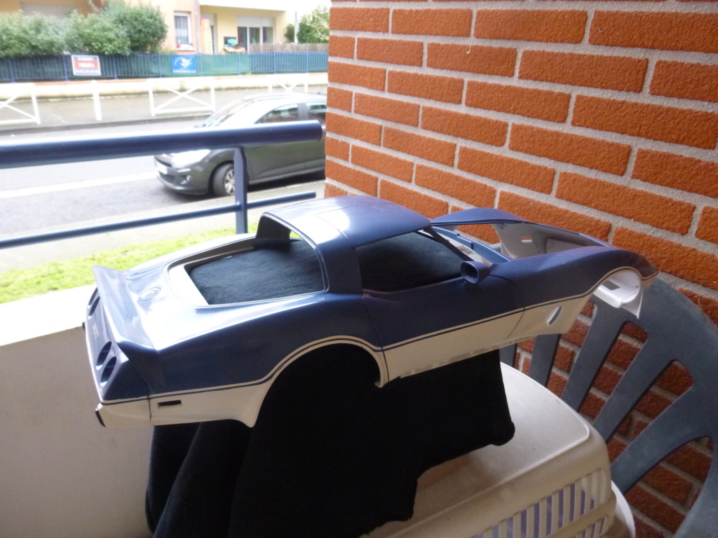 Groooosse Corvette - Page 4 P1030220