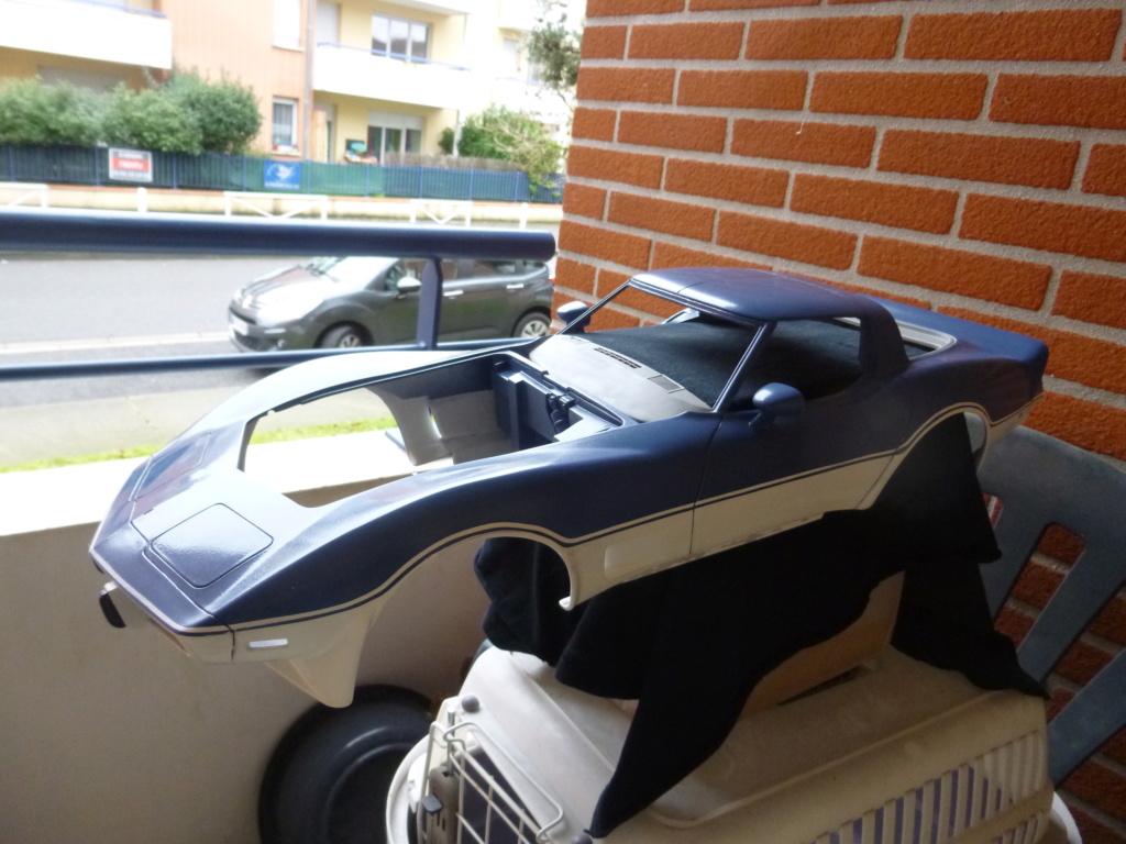 Groooosse Corvette - Page 4 P1030221