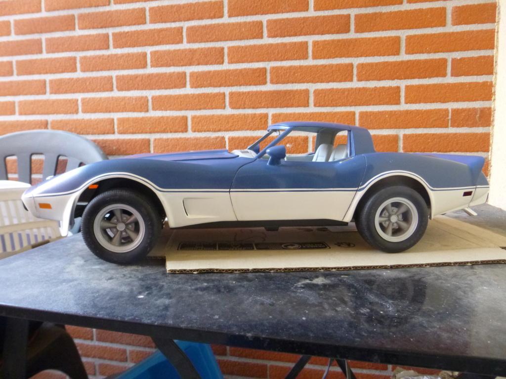 Groooosse Corvette - Page 4 P1030224