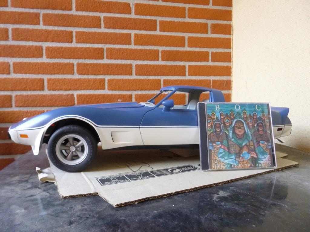Groooosse Corvette - Page 4 P1030226