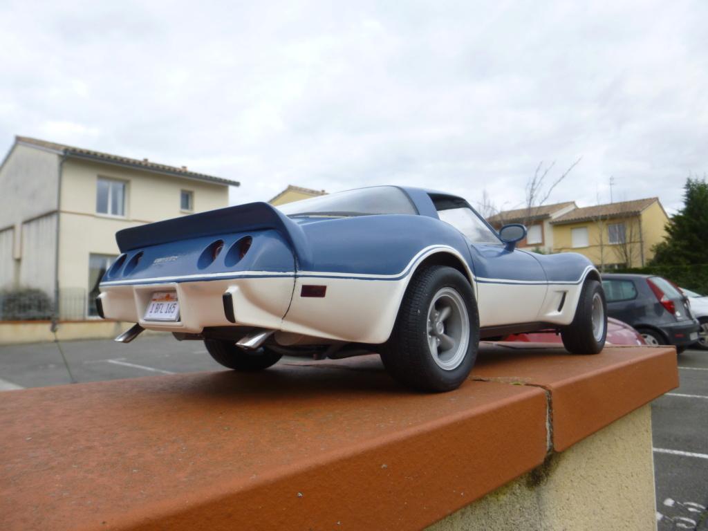 Groooosse Corvette - Page 4 P1030228