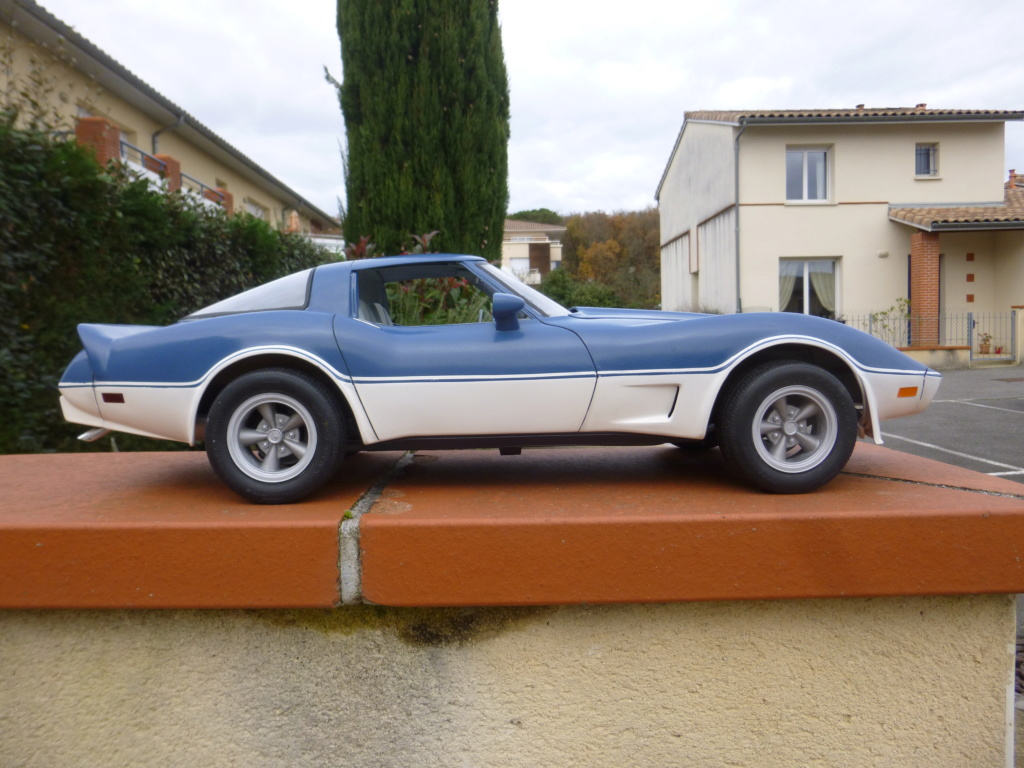 Groooosse Corvette - Page 4 P1030229