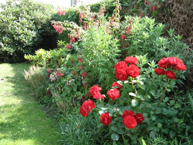jardins et massifs de vivaces Vue_am10