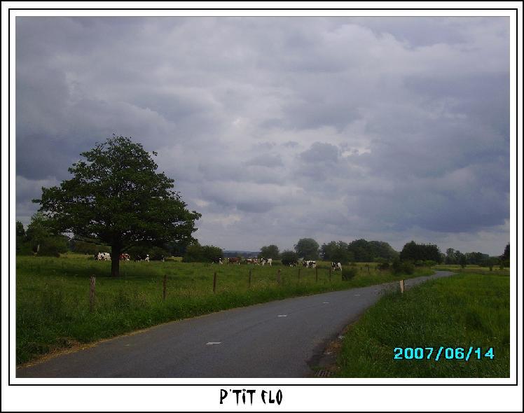 Photos soumises à vos votes -Printemps 2007 Imgp0210