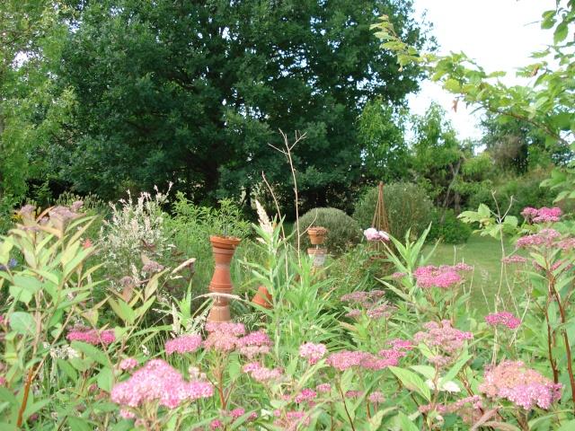 le jardin de Giroflee - Page 2 5juin-15