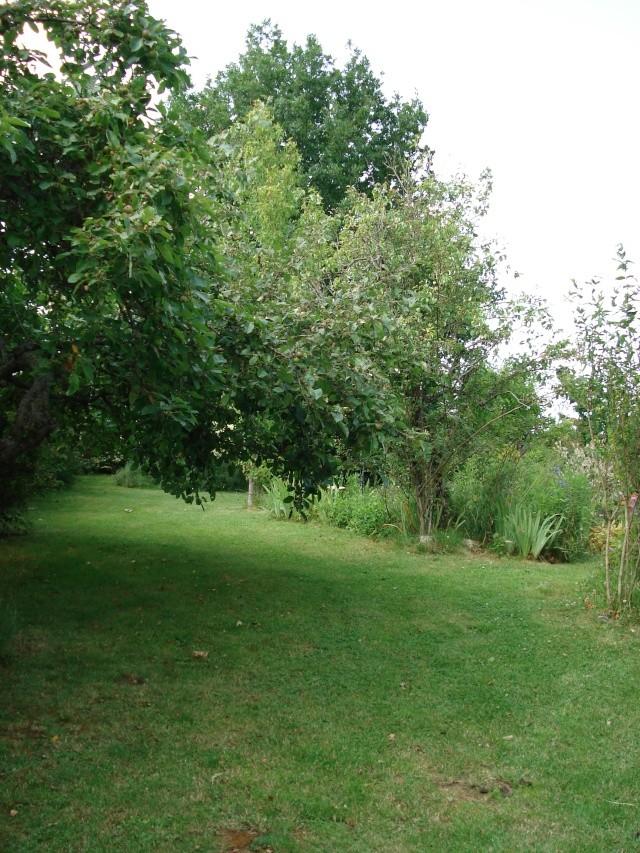 le jardin de Giroflee - Page 2 5juin-16
