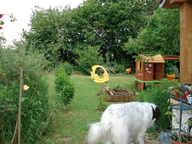 le jardin de Giroflee - Page 2 5juin-17