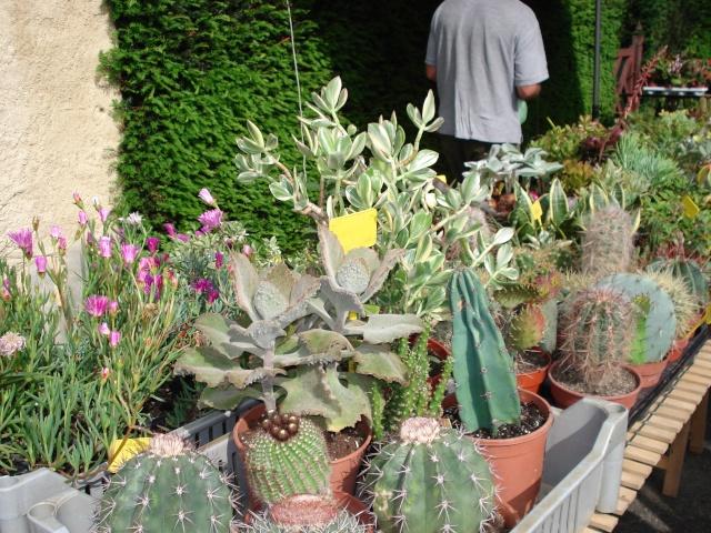 Apremont sur Allier , fête des plantes Apremo12