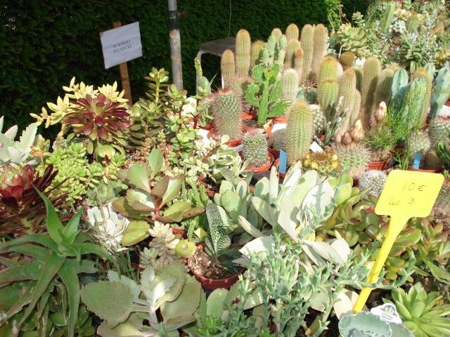 Apremont sur Allier , fête des plantes Apremo14