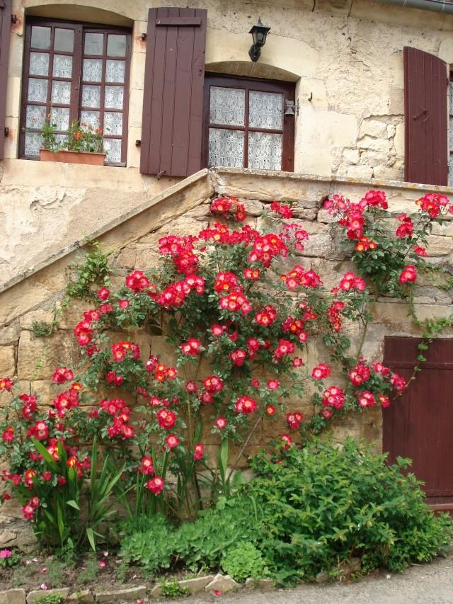Apremont sur Allier , fête des plantes Apremo38