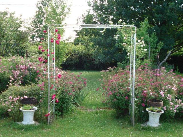le jardin de Giroflee - Page 2 Jardin28