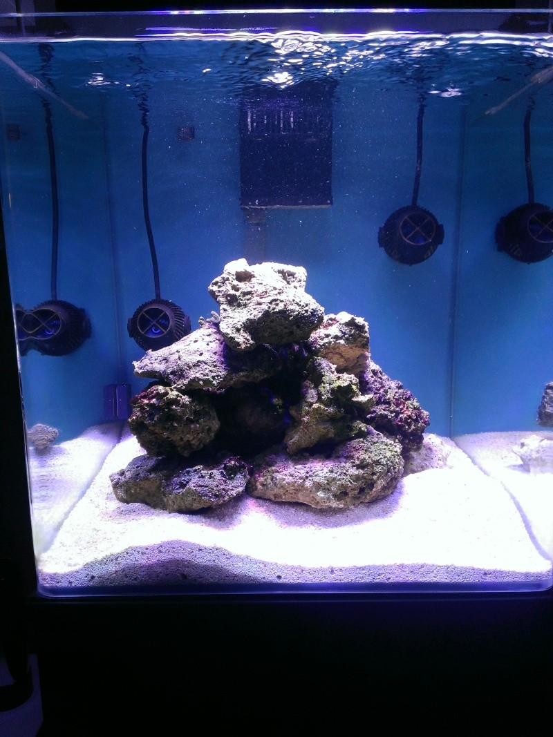 Le nouveau Blau Open Reef de Project901  Wp_20111