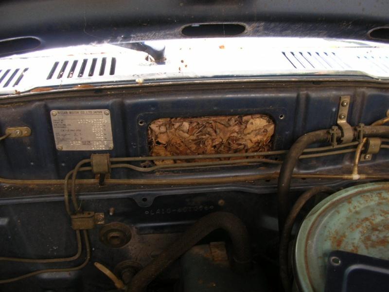 Ma Datsun VIOLET 140J de 1981 Ma_dat15