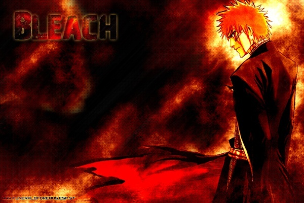 l'univers de bleach