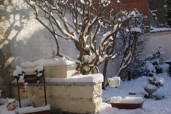 Après-midi chez Mamie (19 décembre 2009) Jardin11