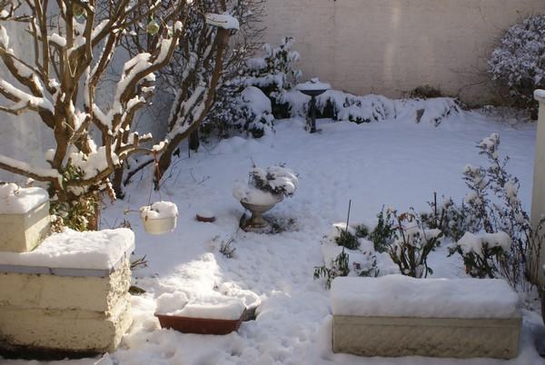 Après-midi chez Mamie (19 décembre 2009) Jardin12