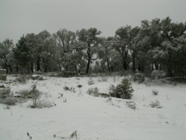 Castedo Branquinho/ Neve - Página 3 Foto410