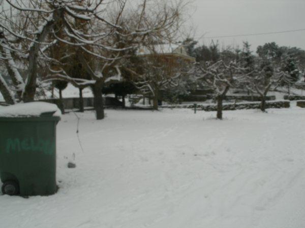 Castedo Branquinho/ Neve - Página 3 Foto610