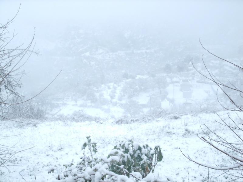 Castedo Branquinho/ Neve - Página 2 Gedc0010