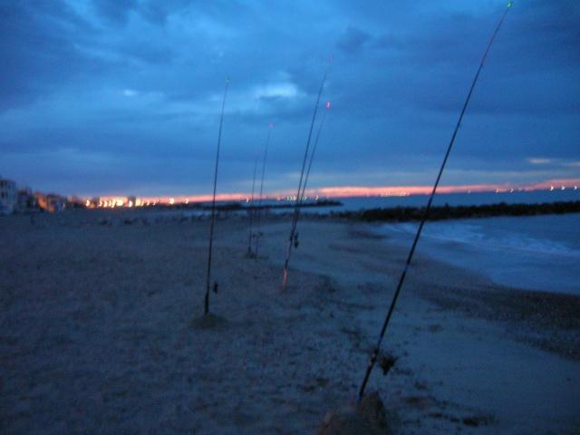 Vos journées de pêche - Page 4 Dscn1824