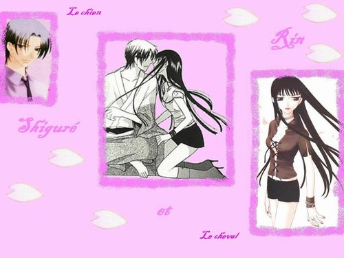 Animés Fruits Basket Rin_et10