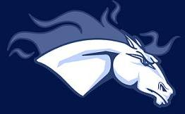 Mustangs & Co
