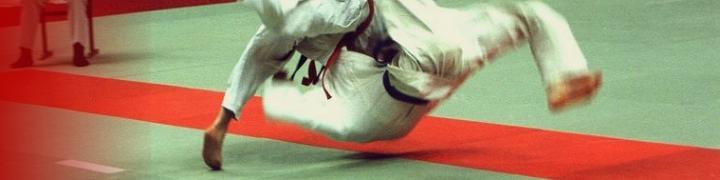 Asptt Judo (Brest)