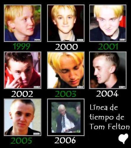 Tom Feelton 11761410
