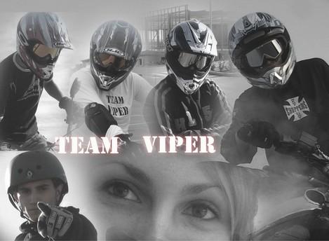 Team Viper