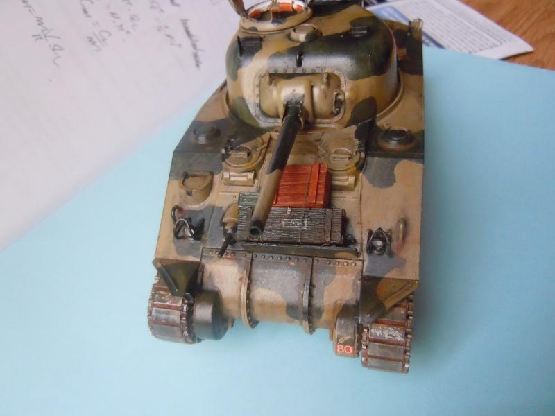 [1/35] Sherman Mk III kiwi - Page 2 Dscn3310