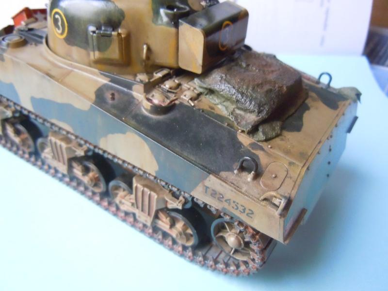 [1/35] Sherman Mk III kiwi - Page 2 Dscn3312