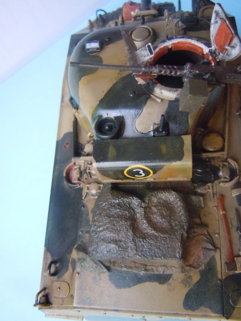 [1/35] Sherman Mk III kiwi - Page 2 Dscn3314