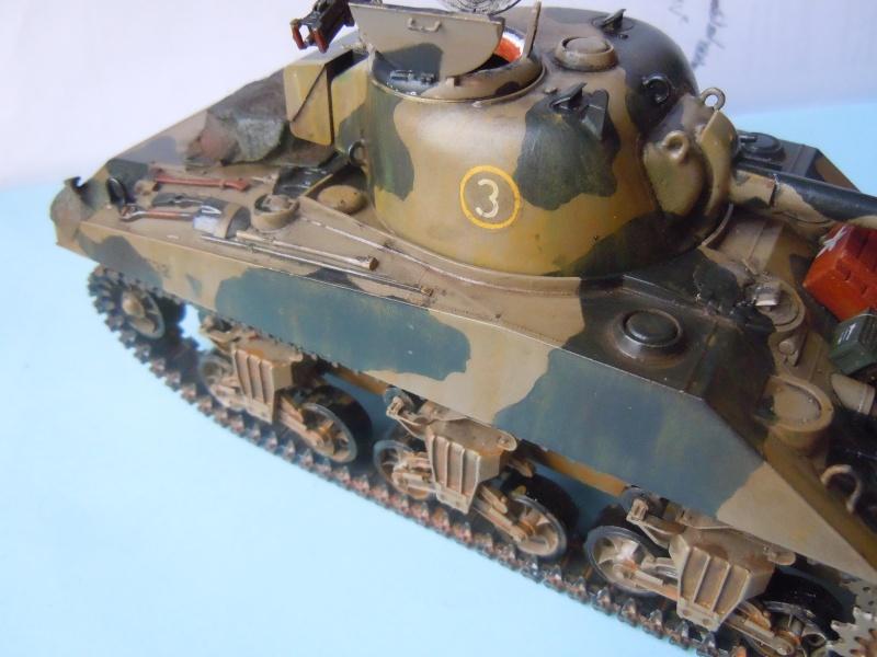 [1/35] Sherman Mk III kiwi - Page 2 Dscn3315
