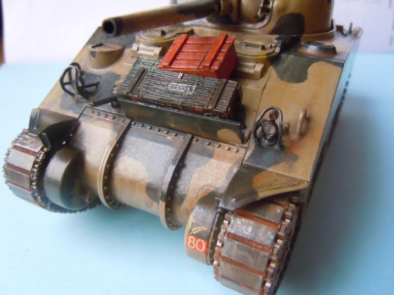 [1/35] Sherman Mk III kiwi - Page 2 Dscn3316
