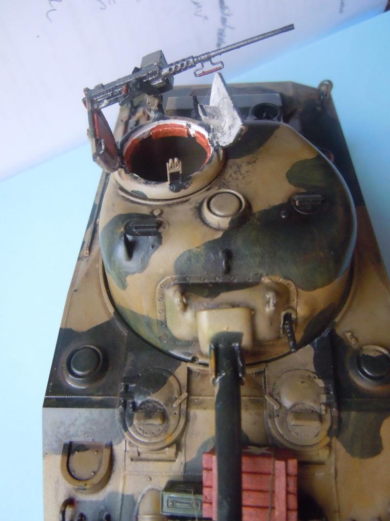 [1/35] Sherman Mk III kiwi - Page 2 Dscn3317