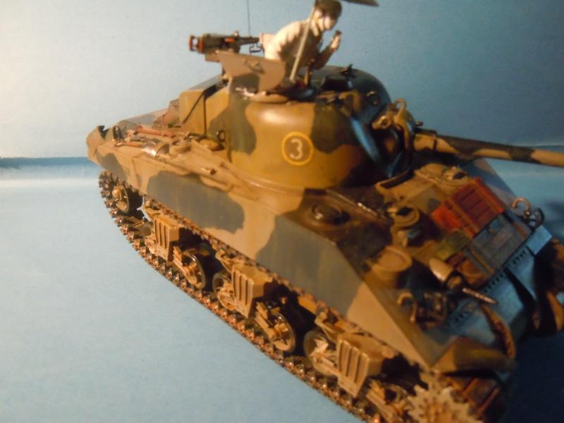 [1/35] Sherman Mk III kiwi - Page 3 Dscn3318