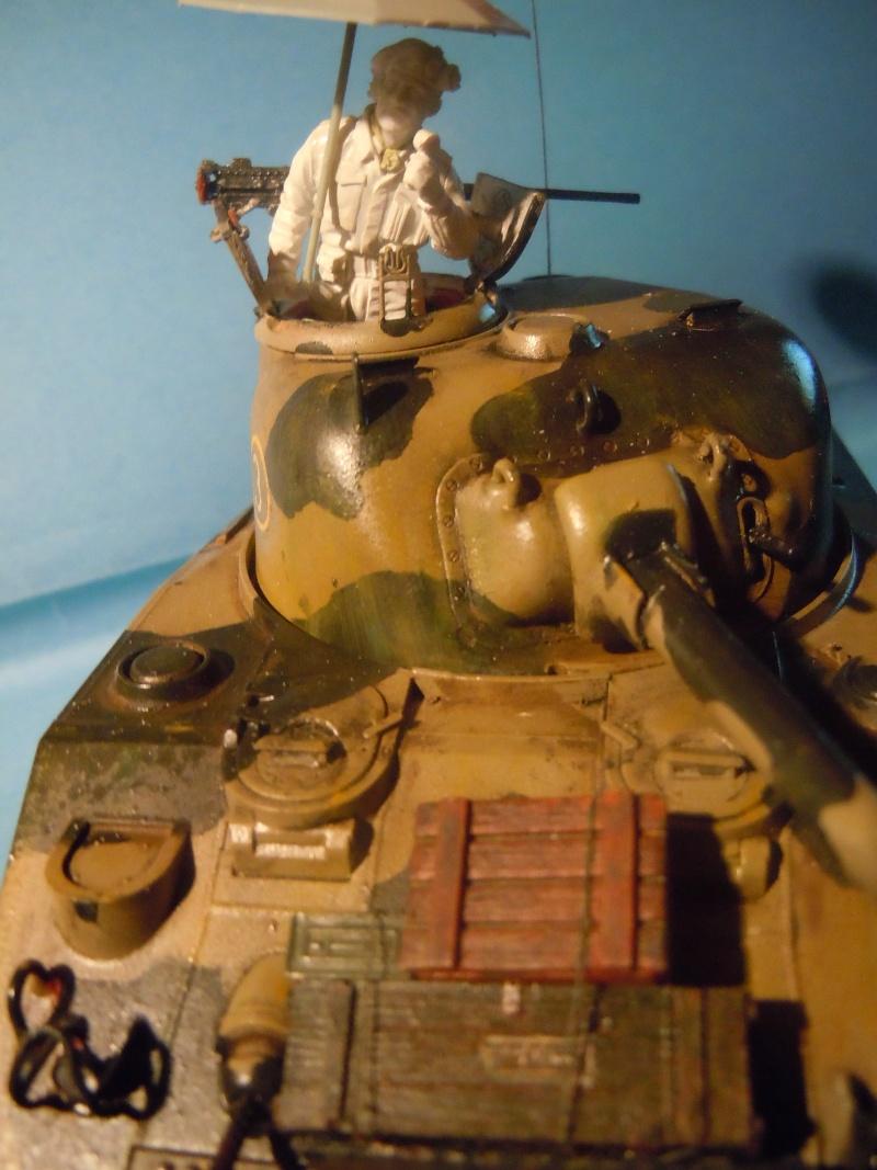 [1/35] Sherman Mk III kiwi - Page 3 Dscn3322