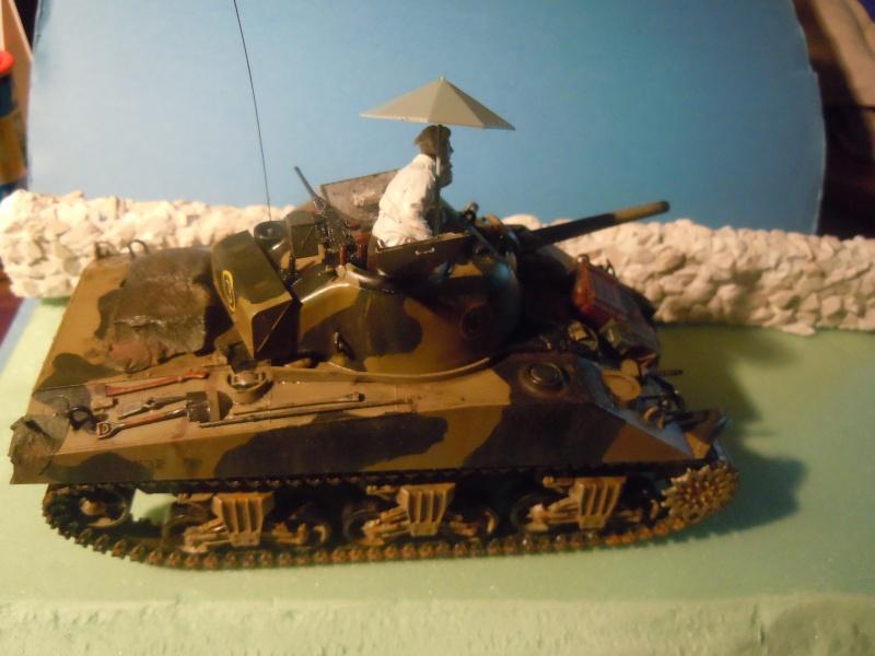 [1/35] Sherman Mk III kiwi - Page 3 Dscn3410