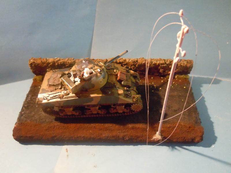 [1/35] Sherman Mk III kiwi - Page 3 Dscn3419