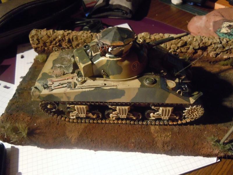 [1/35] Sherman Mk III kiwi - Page 3 Dscn3510